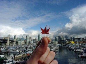 fall-in-vancouver_41