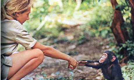 jane-goodall-beauty-and-t-006